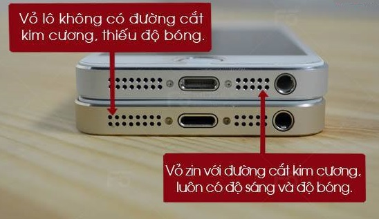 phan-biet-iphone-5-5s-thay-vo-qua-loa