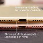 loa iPhone 7 plus